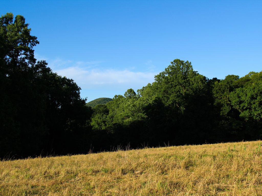 Hike right on the property--36 acres to enjoy!