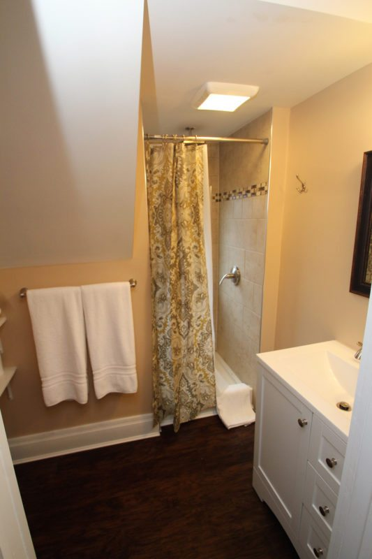 Full Bath--shower, vanity and toilet!