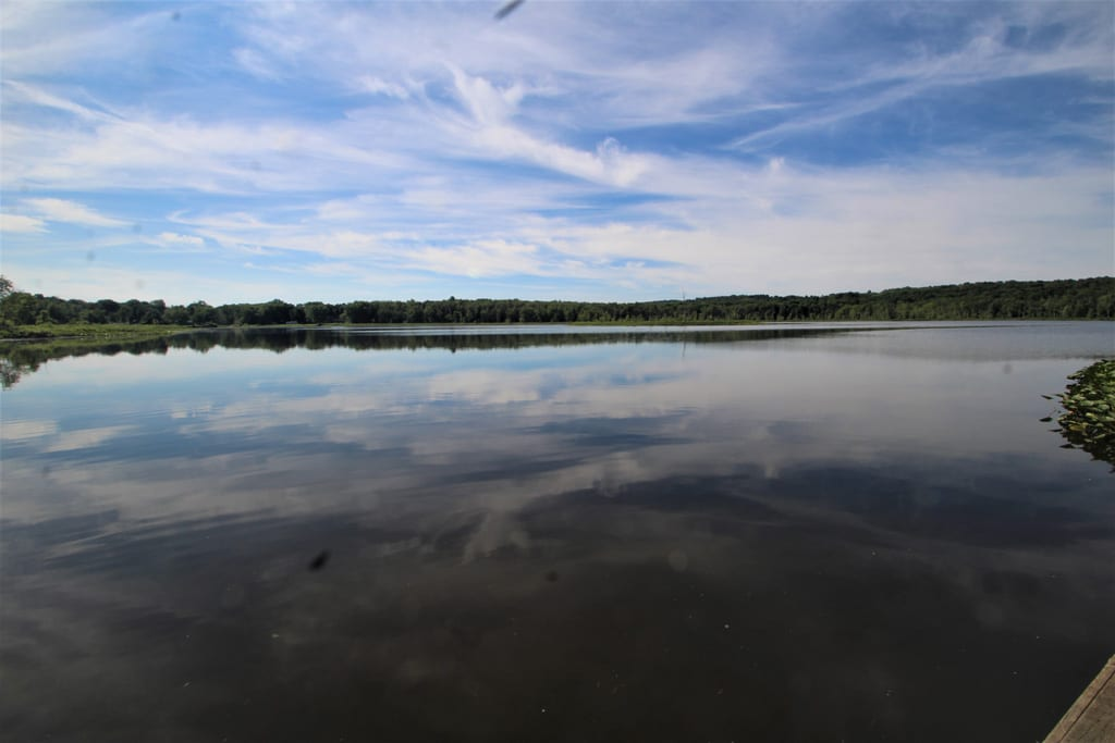 Enjoy Lake LeBoeuf 70 acres via paddle board, canoe or kayak!